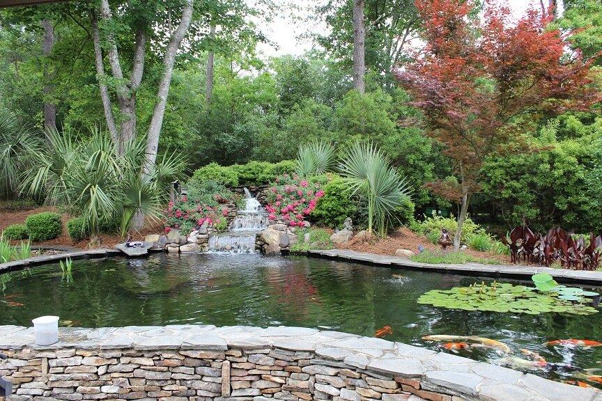 Charleston Pond Tour 1